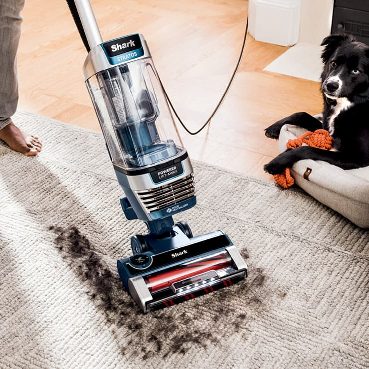 Upright Bagless Vacuums Pet Vacuums For Dogs Cats Amp More